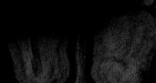 দেবক বন্দ্যোপাধ্যায়ের রহস্য গল্প, দ্বারকানাথের মেজদাদু